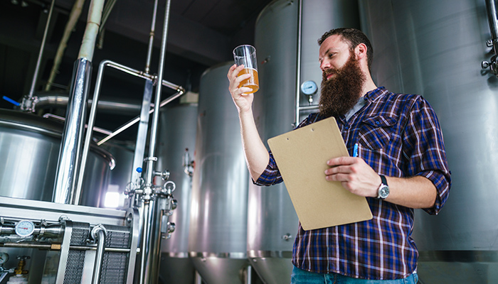 bearded man inspecting beer quality by brewery equipment