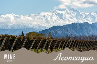 aconcagua valley chile - wine guidethumb