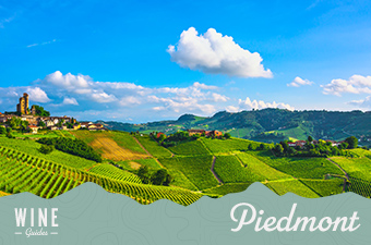 piedmont italy - wine guide thumb