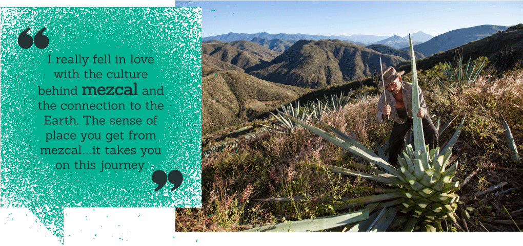 Aquilino García in the field, along with quote, from Judah Kuper: 'I really fell in love with the culture behind mezcal and the connection to the Earth. The sense of place you get from mezcal...it takes you on this journey.'